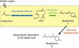 New advanced biofuel as an alternative to diesel fuel