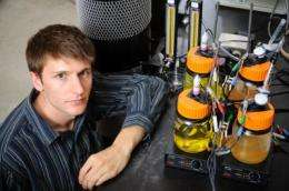 Student unleashes electrical power of microbes