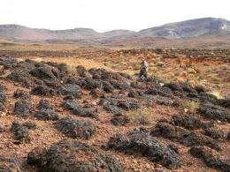 Seeking life's imprint in shifting desert sand