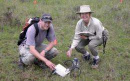 From tropics to poles: Study reveals diversity of life in soils
