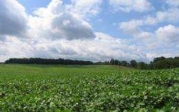Landscape change leads to increased insecticide use in US Midwest
