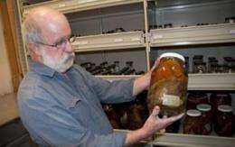 'Library of Fishes' to feature thousands of specimens from remote locations