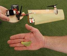 Lockheed Martin develops maple-seed-like drone