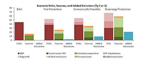 Production of biofuel from forests will increase greenhouse emissions