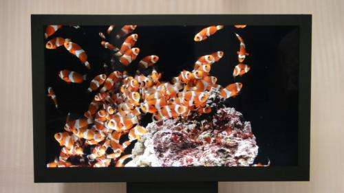 Sony unveils 3D and color e-paper displays at this week's SID 2011