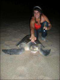 Survey identifies sea turtle 'hitchhikers'