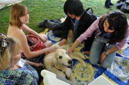 Students dogged by stress get help from therapy pups
