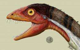 Scientists discover a new species of dinosaur, bridging a gap in the dinosaur family tree