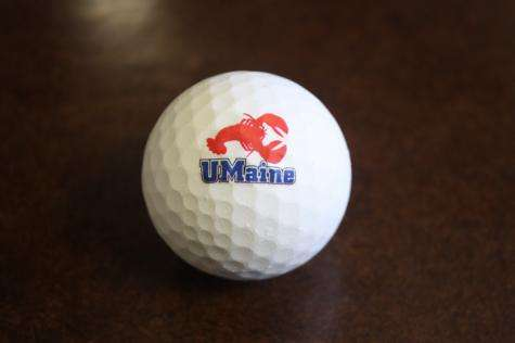 Researchers use lobster shells to create biodegradable golf ball