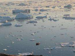 A fishermen in Arctic waters off the coast of Greenland