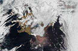 An Eumetsat image shows the ash cloud (reddish colour) billowing from Grimsvoetn, Iceland's most active volcano