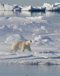 APNewsBreak: study warns of mercury in Arctic (AP)