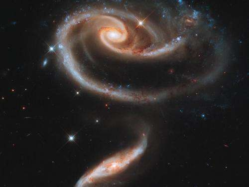 A 'Rose' made of galaxies