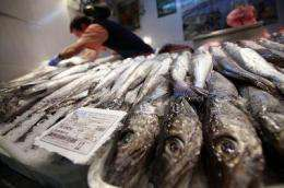 Around 40 percent of hake is mislabeled