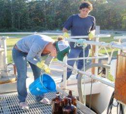 Bacteria convert wastewater chemicals into toxic form