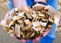 Biomass tax credits stabilized wood prices, fueled economic benefits
