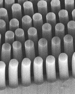 Catching cancer with carbon nanotubes