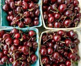 Cherries sit on a farmers market table