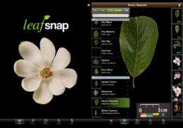 Computer science professor develops mobile app to identify plant species