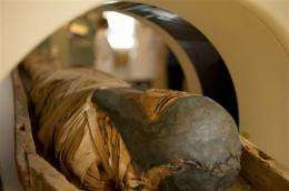 CT scans of Egyptian mummy help Vt. solve crimes (AP)
