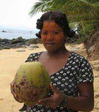 Deep history of coconuts decoded