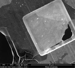 Giant flakes make graphene oxide gel