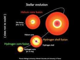 Giant stars reveal inner secrets for the first time