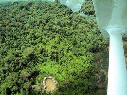Handout aerial picture released by the Hutukara Yanomami Association showing huts of an uncontacted Yanomami  tribe