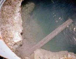 Hot springs microbe yields record-breaking, heat-tolerant enzyme