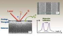 Improving DNA sequencing: Sponge-like biosensor crams enormous power into tiny space
