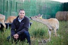 Battling chronic wasting disease in elk and deer