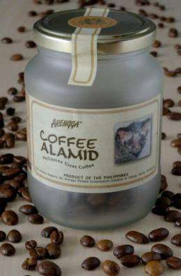 Luxury wild civet cat-excreted coffee beans are exported to many countries including the US, Japan and Australia