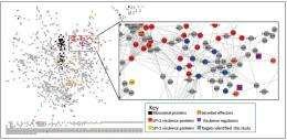 Multi-omics strategy gives systems-level insight toward Salmonella pathogenesis