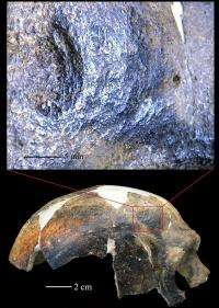 New evidence of interhuman aggression and human induced trauma 126,000 years ago