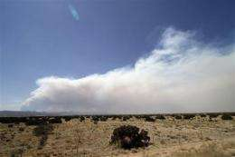 NM wildfire grows, shuts famed Los Alamos nuke lab (AP)