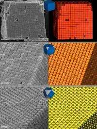 On the road to plasmonics with silver polyhedral nanocrystals