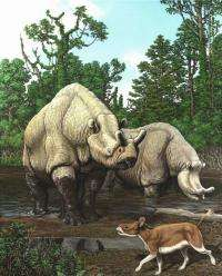Over 65 million years North American mammal evolution has tracked with climate change