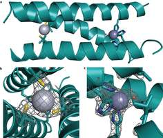 Research group develops more efficient artificial enzyme