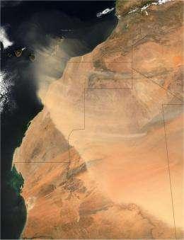 Saharan dust impacts West African monsoon precipitation