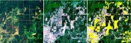 Satellite technology enables rapid, accurate mapping of forest harvest in upper Midwest