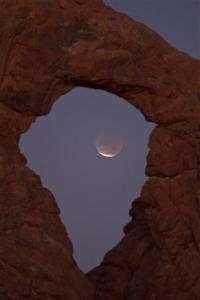 Sky-watchers get rare treat: total lunar eclipse (AP)