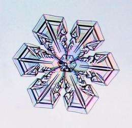 Snowflake science
