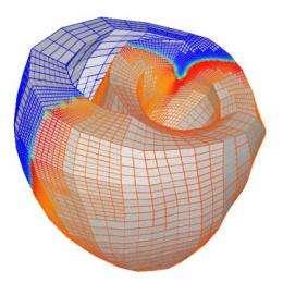 Taking mathematics to heart