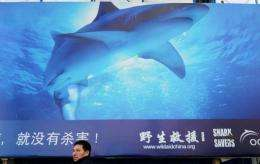 The Bahamas announced a ban on shark fishing to protect the predator at risk due to demand for fins in Chinese cuisine