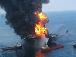 The Deepwater Horizon