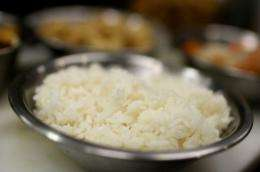The discovery follows a 2008 global crisis that saw the price of rice rise three-fold
