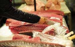 Tuna is on display at New York's main wholesale fish market