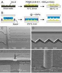 Smooth operators: Teflon microfluidic chips