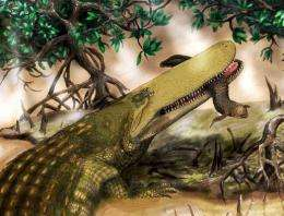 Giant prehistoric crocodile ;shieldcroc; identified