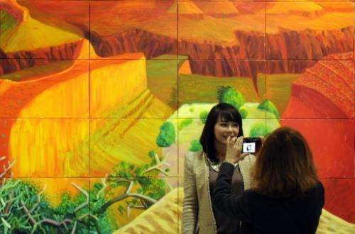 A woman takes a picture of a friend in front of a painting by David Hockney at the Guggenheim Bilbao Museum